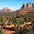мнение · дуб · ручей · каньон · Аризона · пейзаж - Сток-фото © tang90246