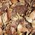 wyschnięcia · ziemi · streszczenie · jesienią · starych - zdjęcia stock © tang90246