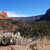 red rock state park sedona stock photo © tang90246