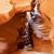 bent · kanyon · oldal · fal · természet · tájkép - stock fotó © tangducminh
