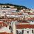 リスボン · 屋根 · パノラマ · 古い · 伝統的な · 市 - ストックフォト © tannjuska