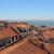 daken · traditioneel · huizen · oude · gebouw - stockfoto © tannjuska