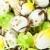 easter eggs stock photo © tarczas