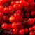 液果類 · 赤 · 葉 · 孤立した · 白 · フルーツ - ストックフォト © tasipas