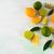 wybór · cytrus · owoce · pomarańczowy · krwi · pomarańcze - zdjęcia stock © tasipas