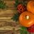 jagody · pozostawia · czerwony · świeże · zielone · liście · Błękitne · niebo - zdjęcia stock © tasipas