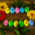 easter · eggs · foglie · buio · legno · Pasqua · simbolo - foto d'archivio © TasiPas