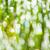 çim · görüntü - stok fotoğraf © tasipas
