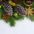 Weihnachten · Niederlassungen · Weihnachtsbaum · dekoriert · Süßigkeiten · Ballons - stock foto © tasipas