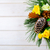 christmas background with golden pine cones and yellow fabric ro stock photo © tasipas