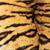 тигр · детали · темно · фон - Сток-фото © taviphoto