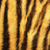 coloré · détail · tigre · texture · nature · couleur - photo stock © taviphoto
