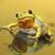 cute tree frog looking at the camera stock photo © taviphoto