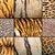 Leopard · Jaguar · pattern · abstract · nero · pelle - foto d'archivio © taviphoto