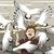 カモメ · 飛行 · 抽象的な · 鳥 - ストックフォト © tawng