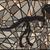 csontváz · szerkeszthető · vektor · sziluettek · sziluett · dinoszaurusz - stock fotó © tawng