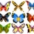 бабочка · силуэта · набор · коллекция · бабочки - Сток-фото © tawng