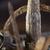 vegyes · sós · harapnivalók · köteg · különböző · textúra - stock fotó © tawng