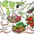 solucan · örnek · renkli · gülen · mutlulukla · hayvan - stok fotoğraf © tawng