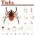 enfermedad · prevención · protección · forma · persona · toma - foto stock © tele52
