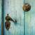 azul · edad · puerta · detalle · manejar - foto stock © tepic