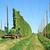 oogst · hop · veld · trekker · voedsel · natuur - stockfoto © tepic