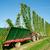 hop · voedsel · natuur · boerderij · machine · alcohol - stockfoto © tepic