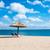приют · Председатель · пляж · синий · желтый · пейзаж - Сток-фото © thisboy