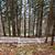 Stoltzekleiven stock photo © thomland