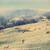 羊 · 雪 · 霧の · 風景 · 冬 - ストックフォト © thp