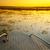 río · puesta · de · sol · árbol · parque · Botswana · cielo - foto stock © thp