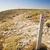 направлении · указатель · пляж · деревенский - Сток-фото © thp