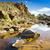porta · fák · gyönyörű · folyó · ausztrál · természet - stock fotó © thp
