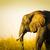 elefánt · hosszú · fű · sétál · alföld · Afrika - stock fotó © thp