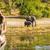 tourists on elephant safari africa stock photo © thp