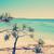 australian beach stock photo © thp