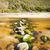 adım · taşlar · mavi · deniz · görüntü · plaj - stok fotoğraf © thp