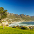 camps bay in cape town south africa stock photo © thp