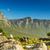 seagulls and the twelve apostles in south africa stock photo © thp