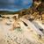şezlong · eski · kum · gündoğumu · dev · parça - stok fotoğraf © THP