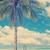palm tree beach stock photo © thp