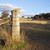 ファーム · ゲート · 金属 · フィールド · 大麦 · 空 - ストックフォト © thp