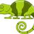 vulkán · rajz · boldog · terv · zöld · állat - stock fotó © tigatelu