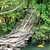 木製 · 吊り橋 · 木材 · 水 · ツリー · 風景 - ストックフォト © timbrk