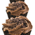 taze · çikolata · sığ · alan · parti - stok fotoğraf © tish1