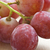 a bunc of red grapes stock photo © tish1