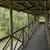 fából · készült · séta · út · Hongkong · park · tavasz - stock fotó © tito