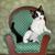 kedi · yavrusu · oturma · sandalye · siyah · beyaz · doğum · günü · partisi - stok fotoğraf © tobkatrina