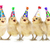 yellow baby chicks singing happy birthday stock photo © tobkatrina