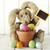 lapin · de · Pâques · vacances · occasion · image · adorable · nature - photo stock © tobkatrina